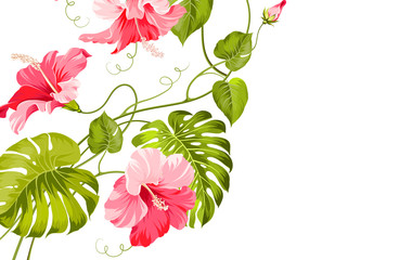 Tropical flower garland.