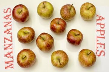 Manzanas en fondo blanco,manzanas en ingles y español