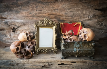 skull and frame on wood background , still life