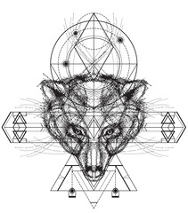 Front view of bear head doodle