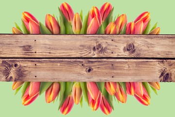 Composite image of tulip flowers