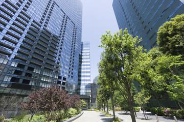 新宿高層ビル街 快晴 青空 新緑 緑 春 超広角で見上げる ビルの植栽