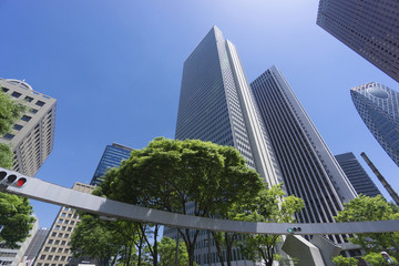 新宿高層ビル街 快晴 青空 新緑 緑 春 超広角で見上げる 新宿警察署前