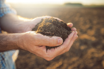 Handful of arable soil in hands of responsible farmer