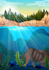 Scene with pine trees and underwater