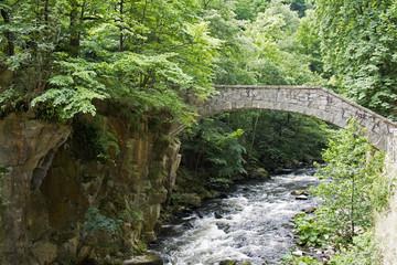 Brücke über die Bode