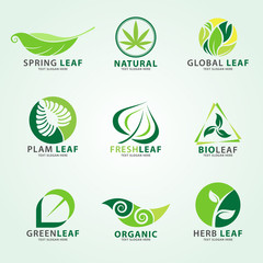 Green leaf logo for business vector set design