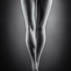 Beautiful female legs. Back view