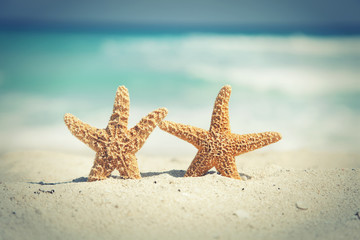 Cross-processed starfish on the beach with ocean waves in backgr
