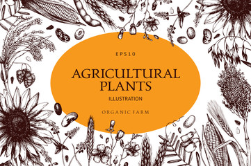 Vector design with ink hand drawn agricultural plants sketches. Vintage illustration with legumes, cereal crops, sunflower and flax. Farm fresh and organic plants template.
