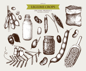 Vector collection of ink hand drawn legume crops sketches. Vintage set of legumes and legume products. Farm fresh and organic food illustration