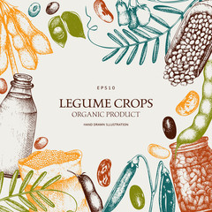Vector colorful design with ink hand drawn legume crops sketches. Vintage illustration with legumes and legume products. Farm fresh and organic food template.