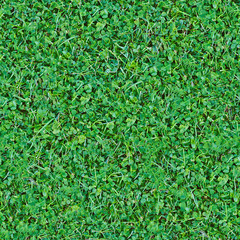 Seamless natural green grass mix background