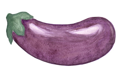 Figure eggplant in watercolor