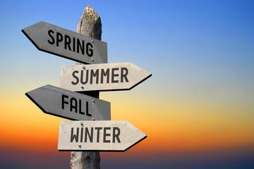 Spring, summer, fall, winter signpost Fotoväggar