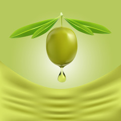 drop of olive oil falling from one green olive illustration on a green background