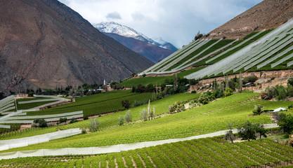 Elqui Valley, Andes part of Atacama Desert in the Coquimbo regio