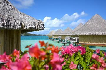 Scenes of Bora Bora