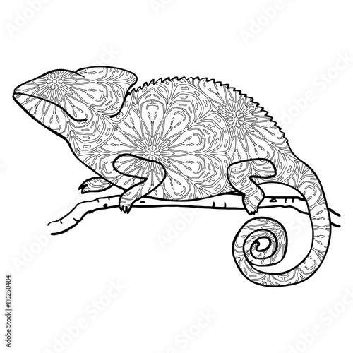 zentangle style chameleon stylized vector animal isolated on white hand drawn chameleon with. Black Bedroom Furniture Sets. Home Design Ideas