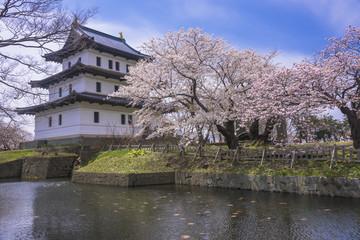 Fotomurales - 桜咲く松前城