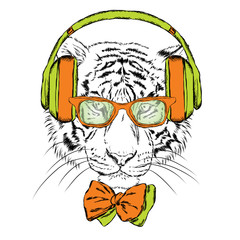 Tiger wearing headphones and sunglasses. Vector illustration.