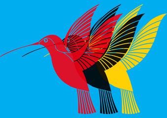 Colibri pop art