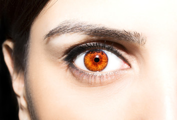 Beautiful insightful look brown eyes