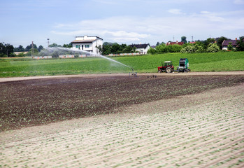 Tractor watering the land on which sprouted green plants