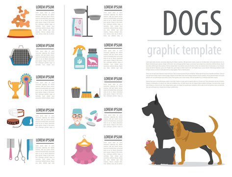 Dog info graphic template. Heatlh care, vet, nutrition, exhibiti