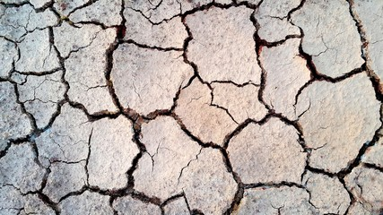 Dry and Cracked ground