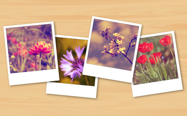 Vintage flowers photos on wooden texture background