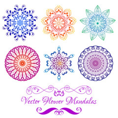 Vector Color Floral Mandala Set isolated on white