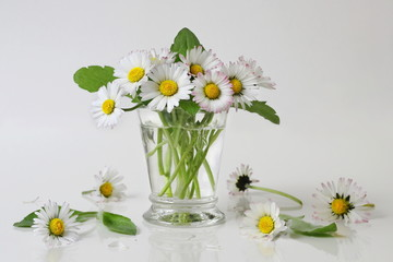 Bouquet of daisy flowers in a vase. Romantic floral decoration with posy of daisies flowers in a vase. Bellis perennis flowers.