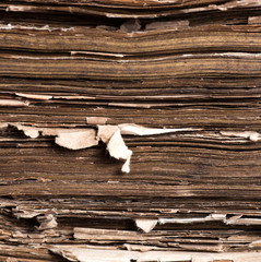 texture of the old book scruffy sheets of paper