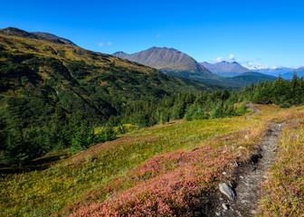 Lost Lake Trail, Seward, Alaska
