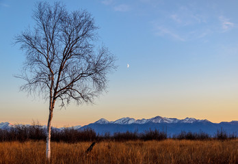 Moonrise over the Kenai Mountains, Anchorage, Alaska