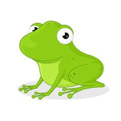 Cute Green Frog Vector cartoon illustration