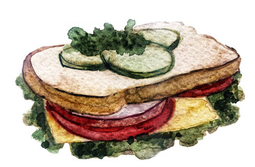 watercolor sandwich on white background