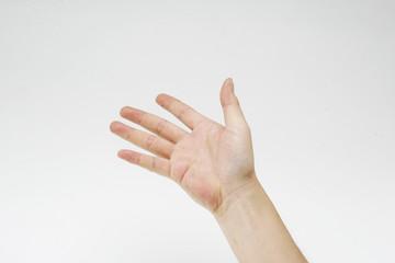 グラフィック素材|ボディパーツ|右手|伸ばした手の平