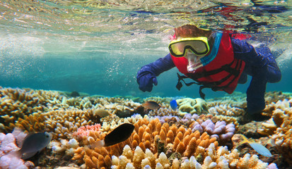 Child snorkeling in Great Barrier Reef Queensland Australia