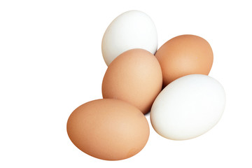 chicken and duck eggs