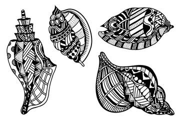 Set Of Decorative Seashells