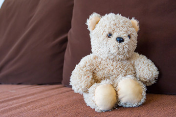 Doll Bear on sofa