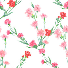 Watercolor floral seamless pattern with carnation