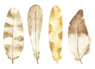 Watercolor feather set isolated on white background