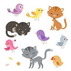 Funny cartoon cats and birds set.