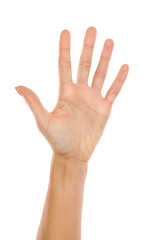 Woman's Hand Showing Five Fingers