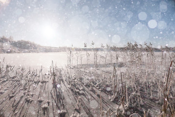 cold day frost grass landscape