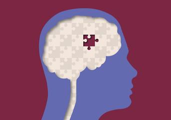 Cerveau - Puzzle
