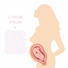 Illustration of a silhouette of a pregnant woman with an embryo